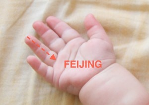 FEIJING